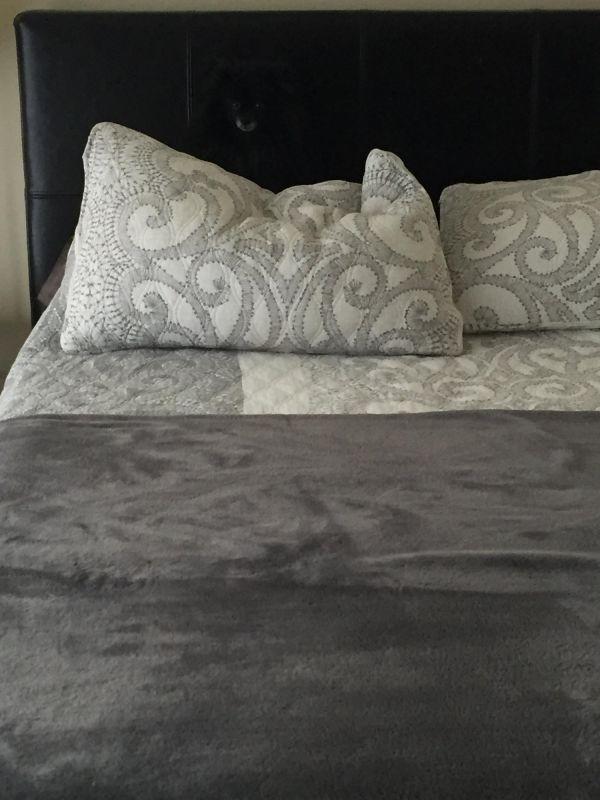 r tsel des tages findet das versteckte tier auf dem bild. Black Bedroom Furniture Sets. Home Design Ideas