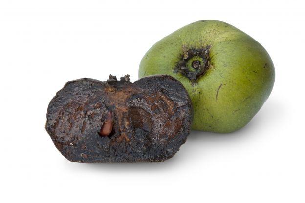diese frucht schmeckt nach schoki aber hat kaum kalorien. Black Bedroom Furniture Sets. Home Design Ideas