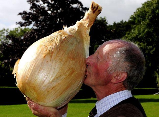 10 Größten Gemüse Der Welt